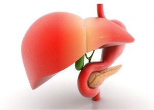 Các bài thuốc giải độc gan hiệu quả từ thiên nhiên