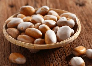 Thầy thuốc đông y chia sẻ bài thuốc chữa bệnh từ hạt mít