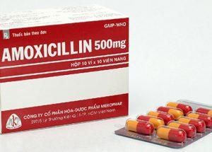 Dược học hướng dẫn sử dụng thuốc Amoxicillin