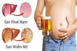 Bảo vệ lá gan khỏi tác hại của bia rượu bằng tảo biển
