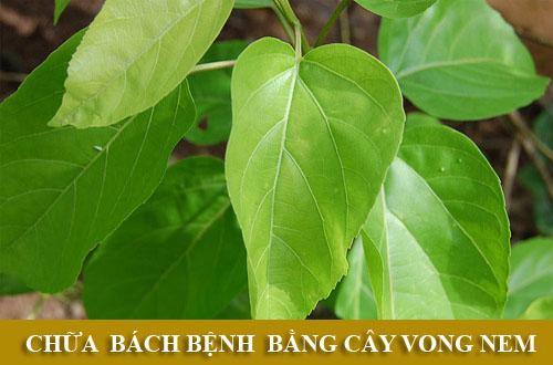 vong-nem-chua-benh